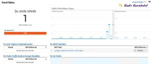 google analytics gerçek zamanlı görme