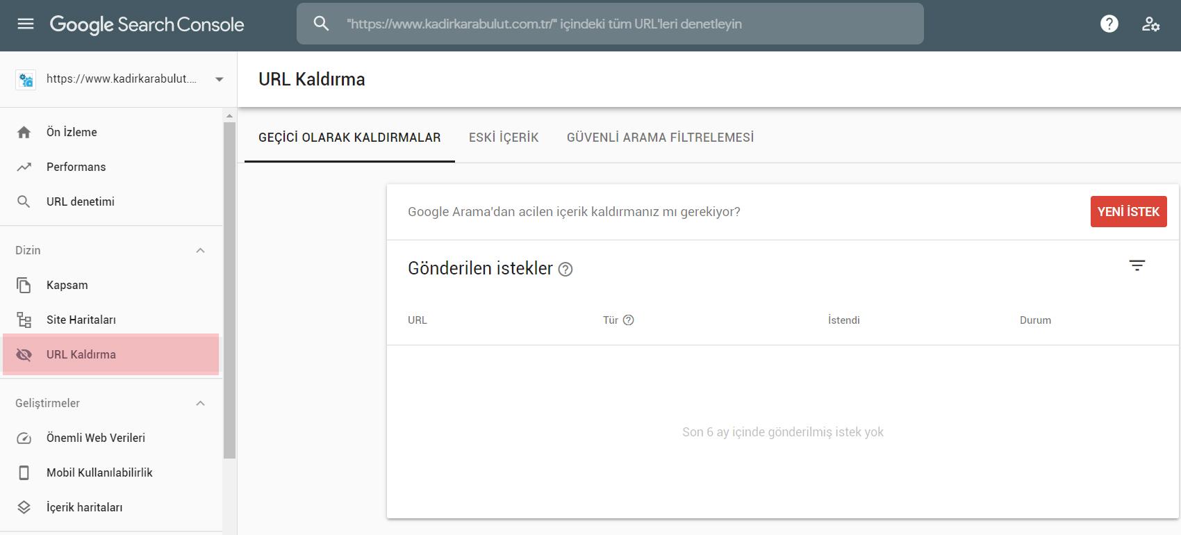 google search console url kaldırma