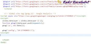 web sitesine analytics kodu ekleme